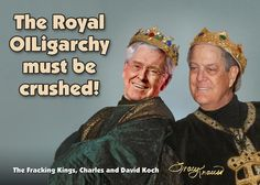 Yet more Koch evildoing.