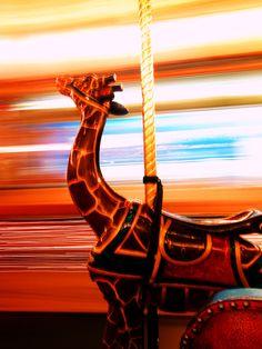 rode the merry-go-round....vintage merry-go-round giraffe