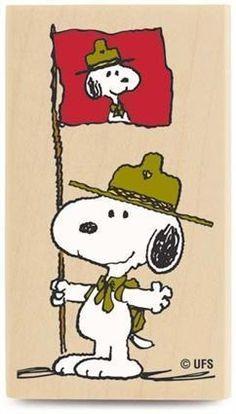 Beagle scout!