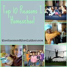 top 10 reasons I homeschool. These reasons listed match up well with our families reasons for the most part.