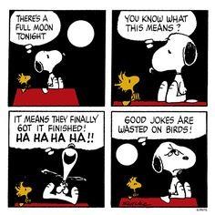 Snoopy tells Woodstock a joke.