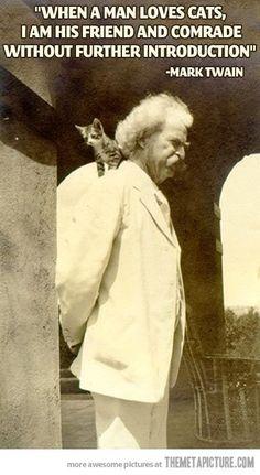 When a man loves cats...