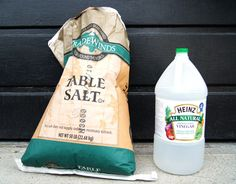 non-toxic weed killers : salt and vinegar!