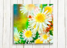 White and yellow flowers canvas art 30/30 cm 12/12 by OneDesign4U, $39.00