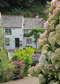 Pretty cottages in Boscastle, Cornwall