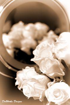 Mirror Roses
