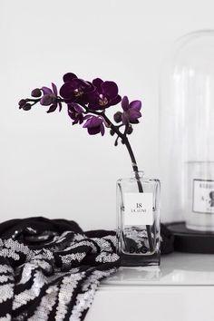 single flower in perfume bottle