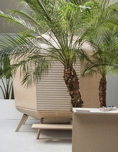Plinths filled with tropical trees and plants were designed by Swiss studio Big-Game, to showcase the finalists of a design prototype competition in Paris organised by fashion house Hermès