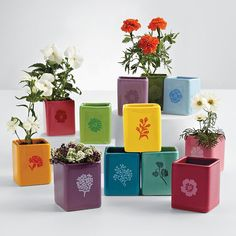 love this gift set ...a pot and seeds for each month of the year. Plant a different seed each month. Love it!