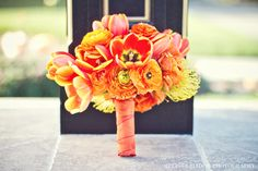 Google Image Result for http://wedding-pictures-04.onewed.com/27553/monochromatic-orange-yellow-modern-bridal-bouquet.jpg