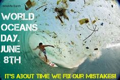 World Oceans Day! June 8th. -Wildlife Earth