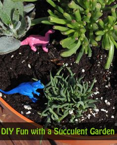 DIY Succulent Garden Jungle with upcycled toys