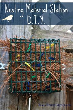 Nesting Material Station for Wild Birds. #birds #nesting #springproject