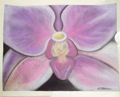 Orchid using chalk pastels
