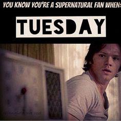 Supernatural Tuesday