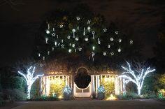 white gardens, white lights, garden art, dream garden, holiday imag