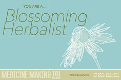 Think you know herbs? I got Blossoming Herbalist (100%) on the Herbal Preparations quiz! Get your score too! #thinkuknowherbs