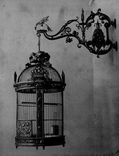 . decor, birdhous, bird cage, candles, birdcages, vintage birds, hangers, iron, antiques