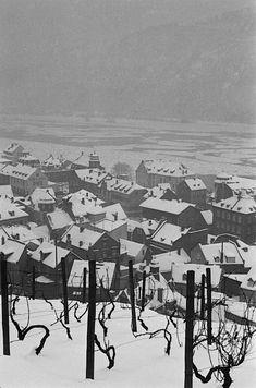 Henri Cartier-Bresson - Rüdesheim am Rhein, Germany, 1956