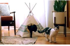 Urban Outfitters - Blog - Cat Tipi