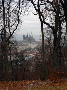 Prague. We got lost walking through the park from the top of Petrin Hill on our way to Prague Castle...we kept seeing it through the trees...so near, yet so far! PS: I didn't take this pic, but I have one almost exactly like it.