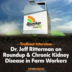 Dr. Jeff Ritterman discusses the latest research linking glyphosate, the key ingredient in the herbicide Roundup, to an epidemic of chronic kidney disease in many parts of the world. More here: http://truth-out.org/news/item/24922-truthout-interviews-dr-jeff-ritterman-on-roundup-and-chronic-kidney-disease #Roundup #StopMonsanto #ANewResistance #GMOs