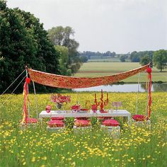 Garden dining with canopy