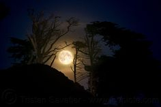 Killer Tips for Photographing the Moon That You Can�t Pass Up