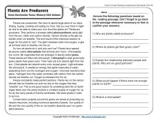 Plants Are Producers | 5th Grade Reading Comprehension Worksheet