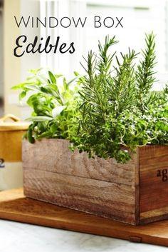 Grow Edibles in Window Boxes --> http://www.hgtvgardens.com/edible/window-box-edibles?soc=pinterest