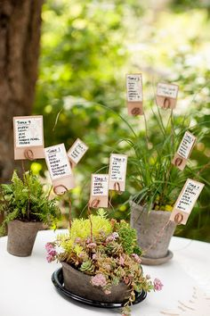 cute idea for seating chart