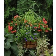 Mixed Container Solutions