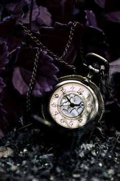 ..magical Fairy Tale time...