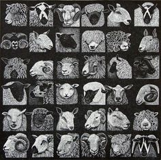Hilary Paynter. Sheep Show. (wood engraving)