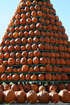 Just a few pumpkins!!! Looks like the Pumpkin Festival in Circleville, Ohio