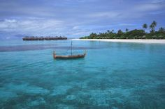 palm dhuni, coco palm, beaches, palm beach, soft sand, resort, visit place, palms