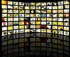 100+ video sites every educator should bookmark