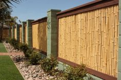 Bamboo Fence Ideas. Sweet and cheap Im sure