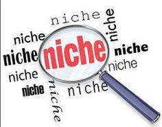 60+ Niche Social Net