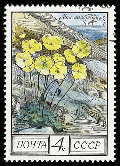 stamp cccp 1975 4428 | Flickr - Photo Sharing!