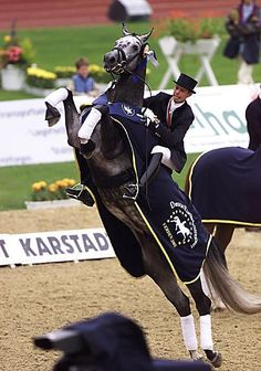 Further proof that dressage riders have the best seats
