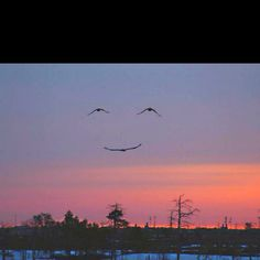 The universe smiles at you, smile back.