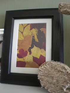 fall leaves in a frame.