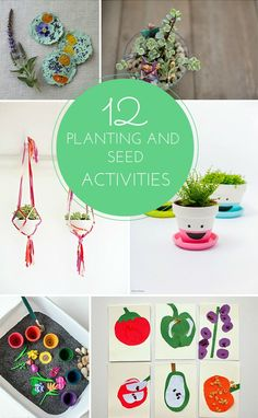12 Fun Planting and