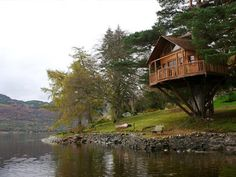 lakeside tree house