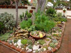 READER PHOTOS! A gem of a succulent garden - Fine Gardening