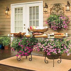 Trailing Petunias—Add color to your outdoor party with potted plants. There's no need for a patterned tablecloth here. Potted petunias add all the color you need under the glass-top dining table. | SouthernLiving.com