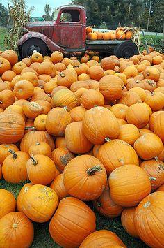 Nice Truck & Fall Pumpkins - British Columbia, Canada