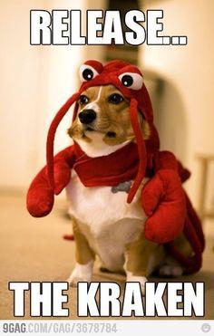 Release.. the kraken!!