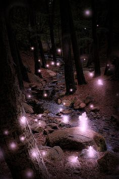Faerie Hollow...#fantasy #faerie #fairy #art #purple